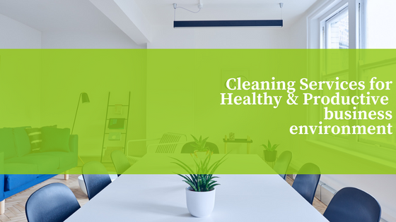 Cleaning Services in DC, Maryland, and Virginia Maids Prime