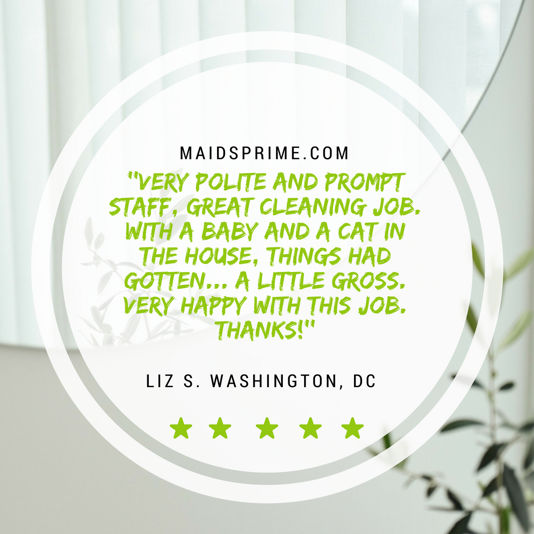 Maids Prime House Cleaning Service Review